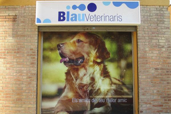 Fachada-perro-centro-veterinario-arenys-de-mar