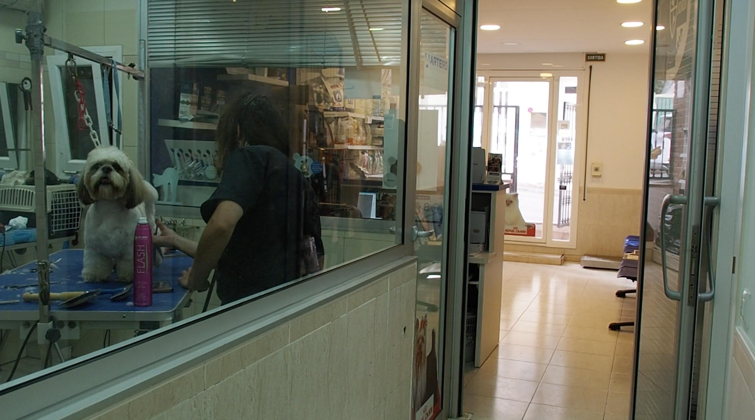 Peluqueria-y-recepcion-clinica-canet