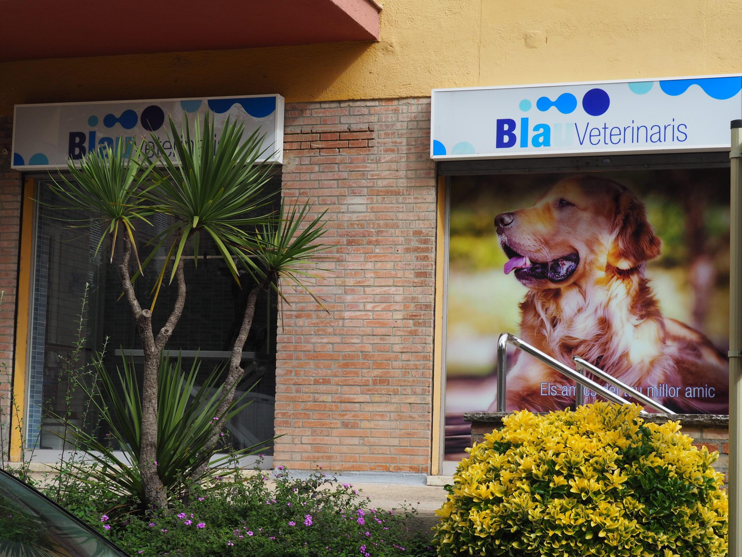 fachada-centro-veterinario-Arenys-de-Mar
