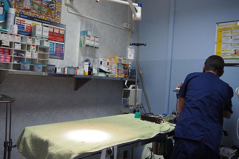Sala-de-cirurgia-con Veterinario