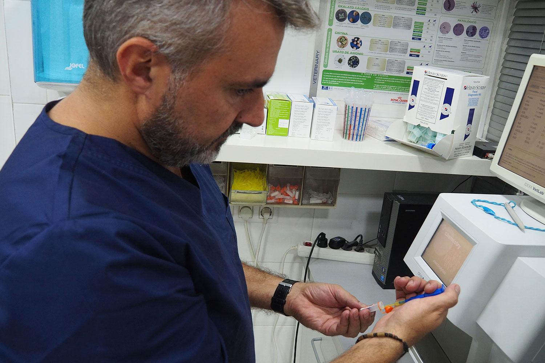 Veterinario-tubo-con-muestras-y-pipeta